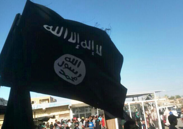 Bandiera dell'Isis