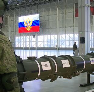 Il missile 9M729