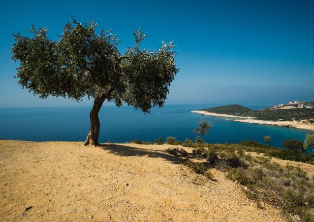 Paesaggio greco