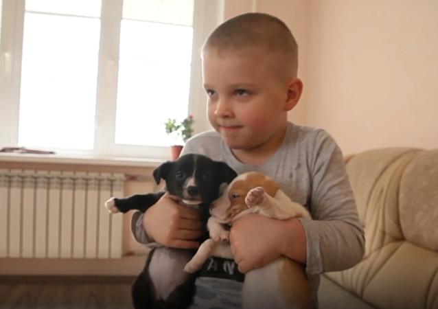 Vanya Shapranov, un ragazzo di 6 anni da Vladikavkaz, insieme a suo padre salva gli animali nei guai.