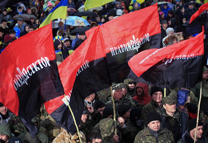 Le bandiere del movimento Settore destro