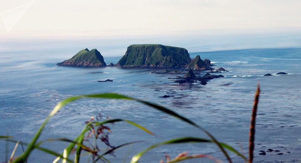 Curili, 2004