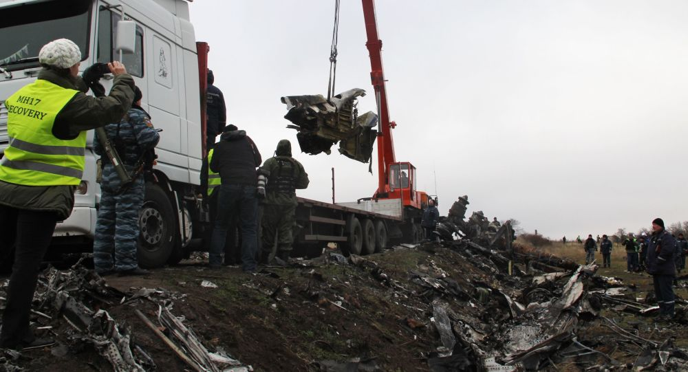 Il volo M17 partito da Amsterdam e diretto a Kuala Lumpur si è schiantato il 17 luglio 2014 nella zona orientale dell'Ucraina