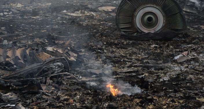 Rottami Boeing 777 della Malaysia Airlines, Ucraina