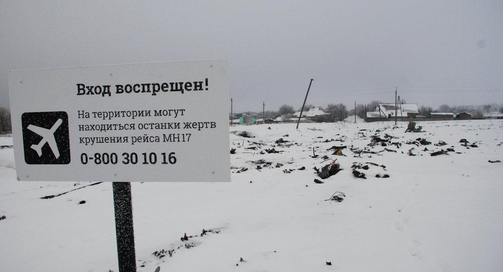 Luogo del disastro del volo Malaisia Airlines MH17 nel Donbass