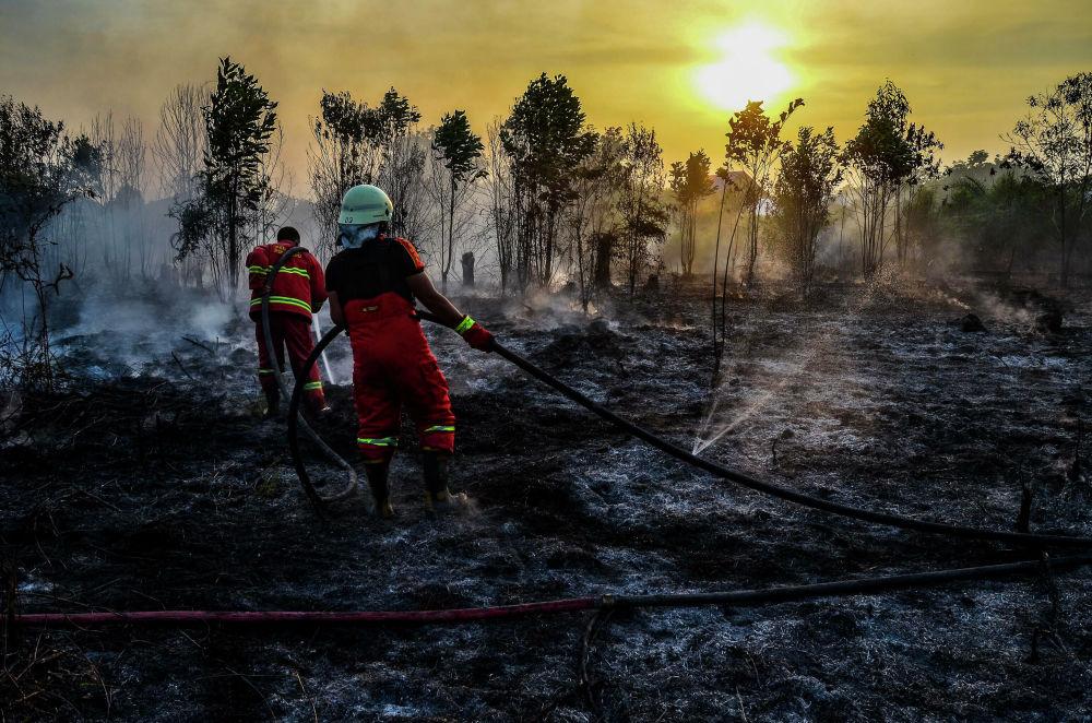 Pompieri impegnati nelle operazioni di spegnimento di uno degli incendi sull'isola di Sumatra in Indonesia