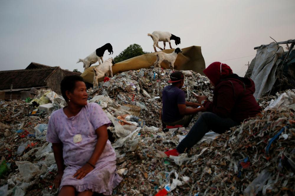 I rifiuti vengono sezionati e suddivisi dagli abitanti del posto