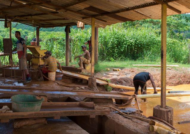 Estrazione d'oro a El Callao, Venezuela