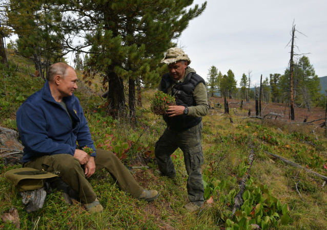 Russian President Vladimir Putin and Defence Minister Sergei Shoigu enjoy a walk during their leisure time in the Siberian Taiga area, Russia.