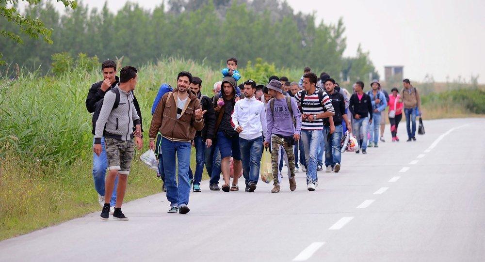 Migranti siriani in marcia verso confine serbo-ungherese