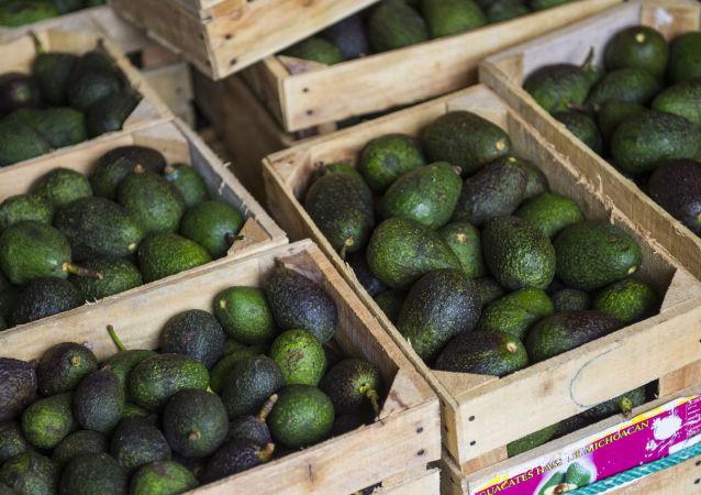 Cassette di avocado