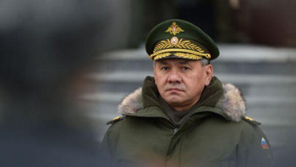 Ministro della Difesa della Russia Shoygu - Sputnik Italia