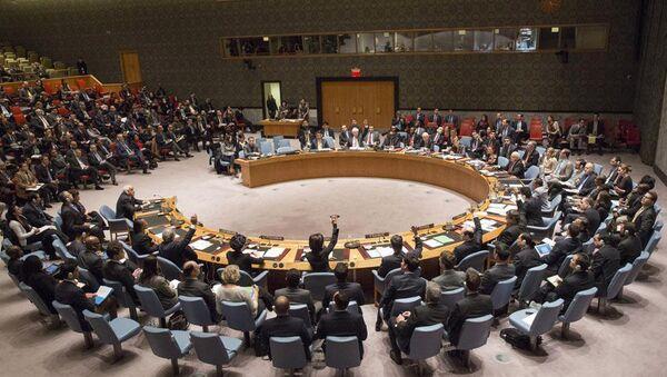 UN Security Council meeting, December 30, 2014 - Sputnik Italia