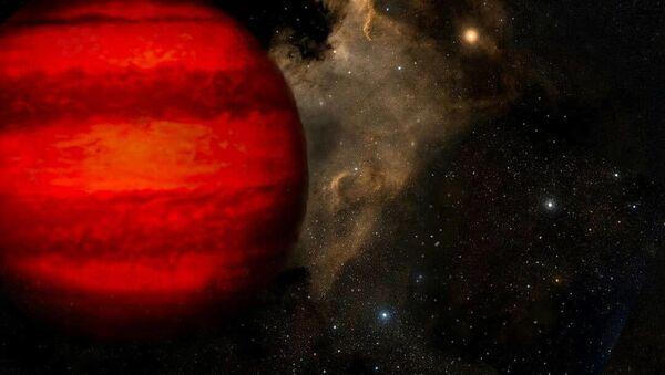 Immagine di una nana bruna - Sputnik Italia