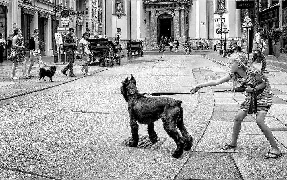 La foto Sulla strada di Vienna scattata dal fotografo Gary White, vincitrice nella categoria Fotocamera compatta dei Sony Alpha Awards 2020