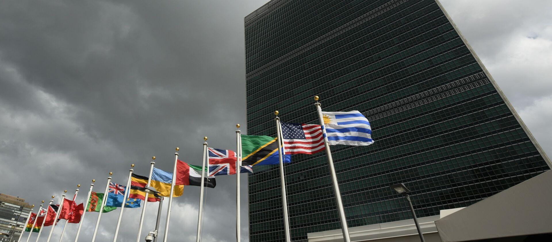 La sede dell'Onu a New York - Sputnik Italia, 1920, 29.01.2021
