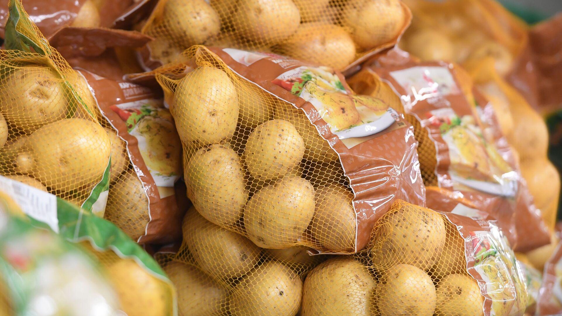 Ziemniaki - Sputnik Italia, 1920, 20.03.2021