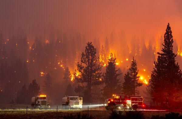 Incendi in California, evacuate migliaia di persone - Sputnik Italia