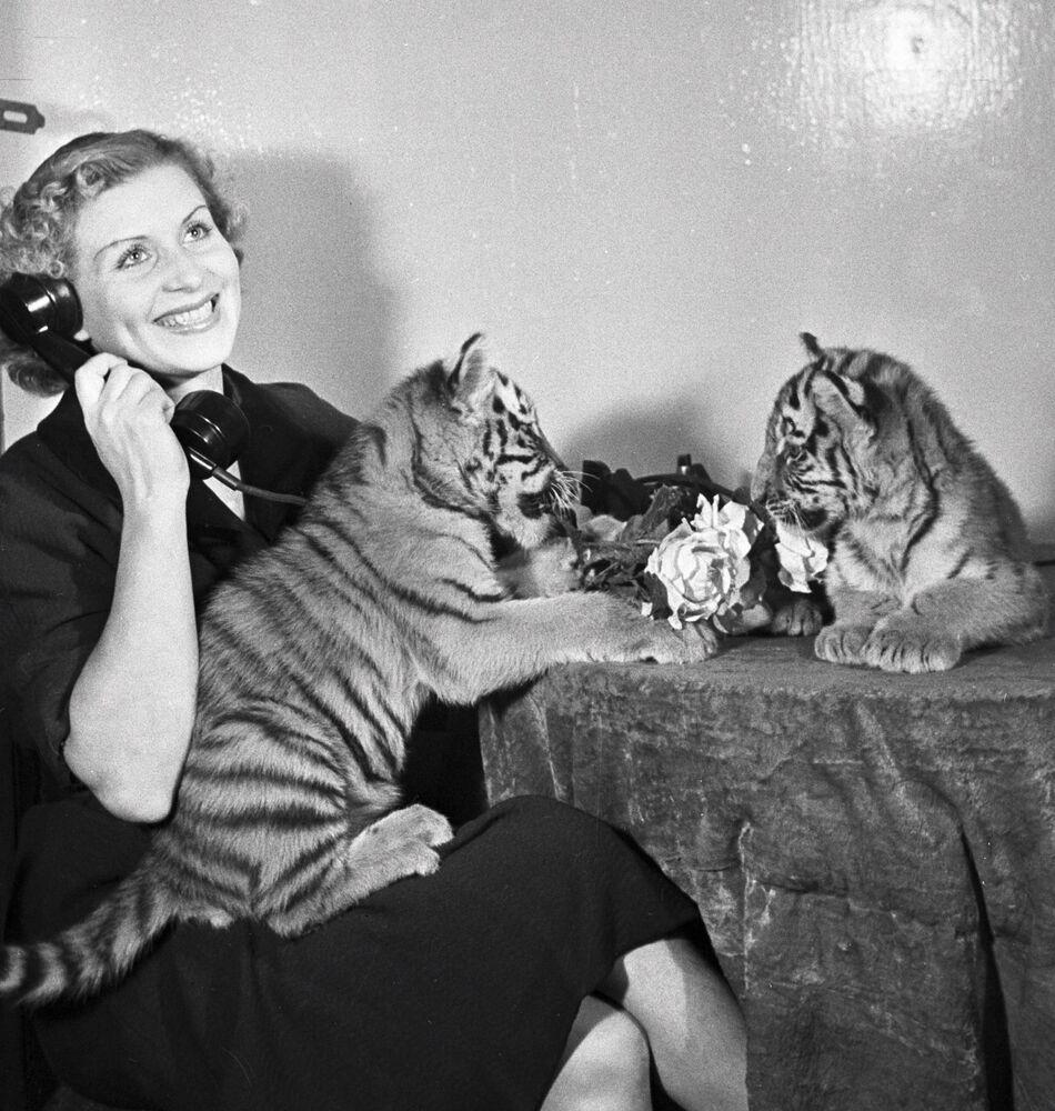 Addestratrice di animali Margarita Nazarova con i cuccioli di tigre