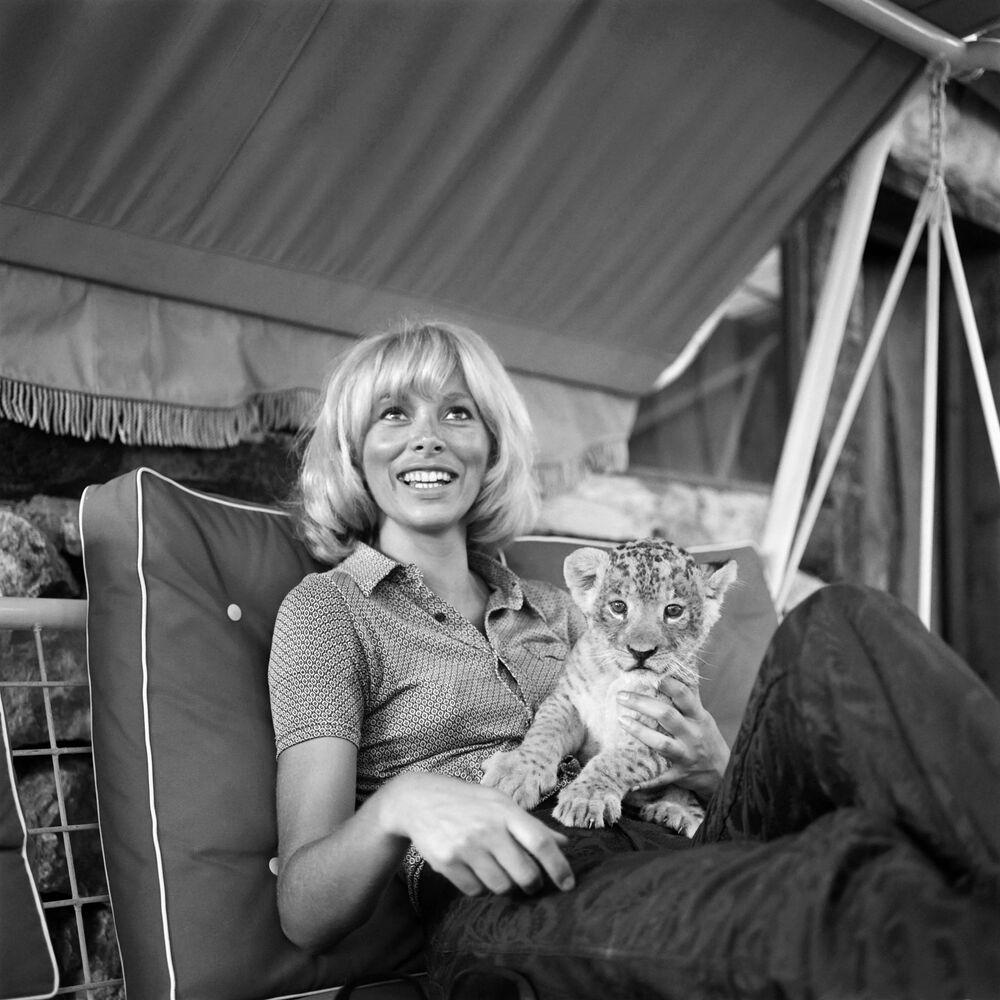 L'attrice francese Mireille Dark con un cucciolo di tigre