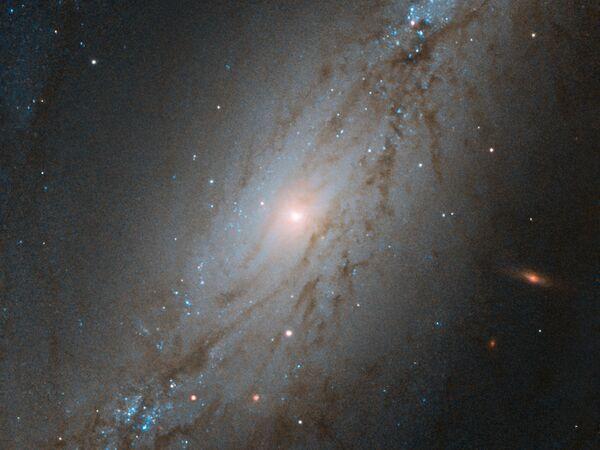 La galassia NGC 7513 si trova a circa 56 milioni di anni luce di distanza nella costellazione meridionale dello Scultore - Sputnik Italia