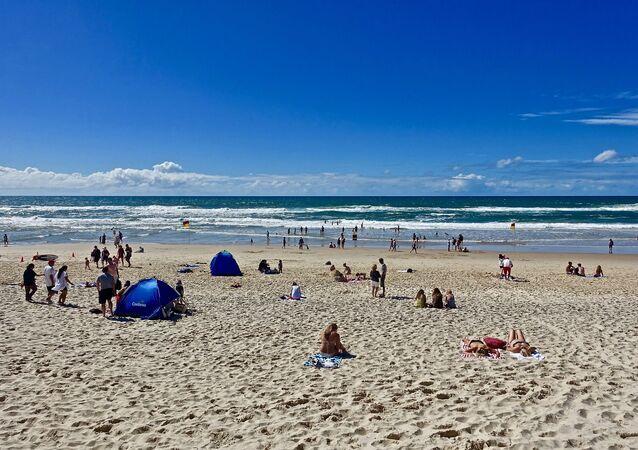 una spiaggia con bagnanti