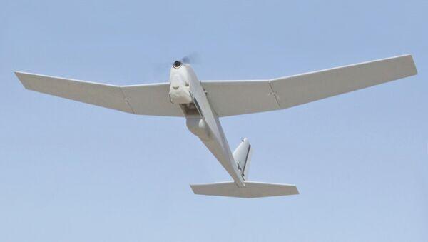 RQ-20, drone spia di fabbricazione statunitense - Sputnik Italia