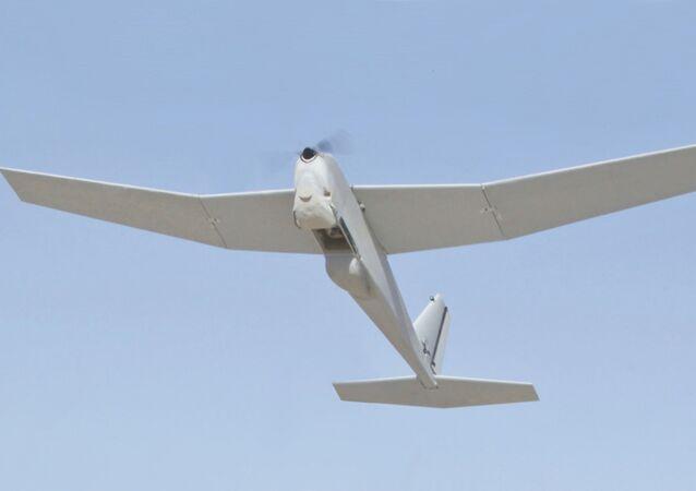 RQ-20, dron espía de fabricación estadounidense