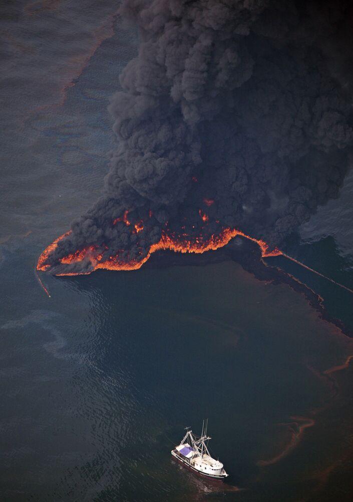 La fuoriuscita di petrolio dovuta all'esplosione della piattaforma Deepwater Horizon ha causato danni irreparabili all'ecosistema del Golfo del Messico.