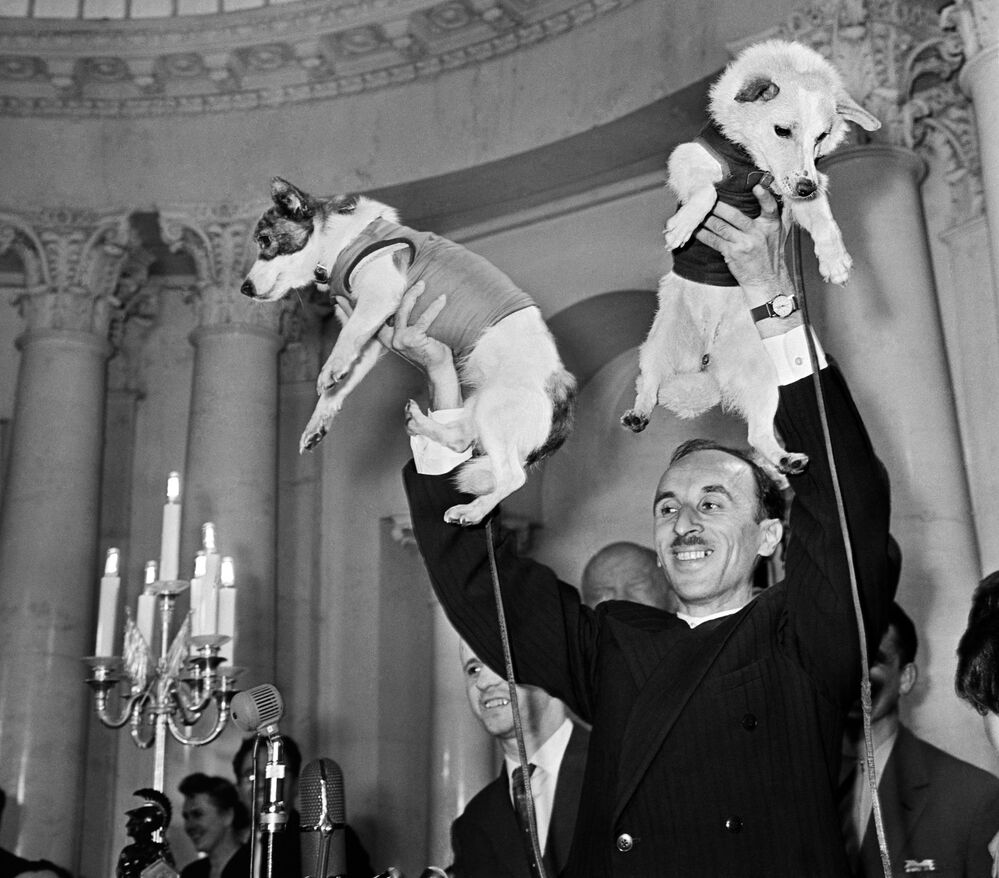 L'accademico Oleg Gazenko e i cani cosmonauti Belka e Strelka alla conferenza stampa dedicata al volo della navicella satellite con a bordo gli animali.