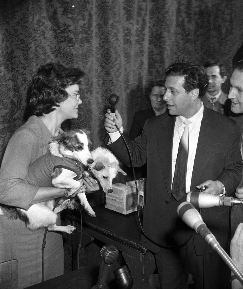I cani Belka e Strelka danno un'intervista al corrispondente della radio di Mosca, 1960.