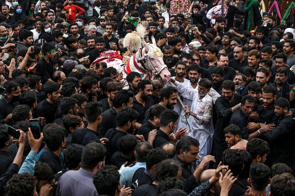 I musulmani sciiti si riuniscono per toccare un cavallo bianco che simboleggia quello usato dal santo musulmano del VII secolo Imam Hussein in battaglia, durante il mese islamico di Muharram prima delle cerimonie di Ashura, a Lahore il 29 agosto 2020, Pakistan