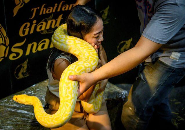 Un visitatore posa per una fotografia con un pitone durante il Pet Expo Thailand 2020 a Bangkok, il 5 settembre 2020