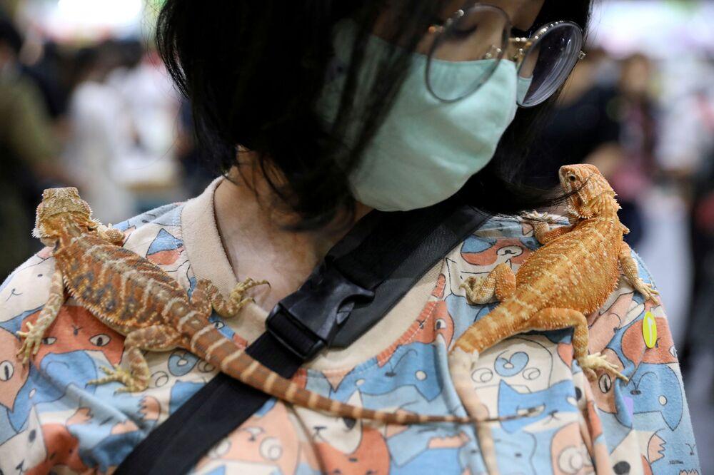 Una donna passeggia con due gechi a Bangkok.
