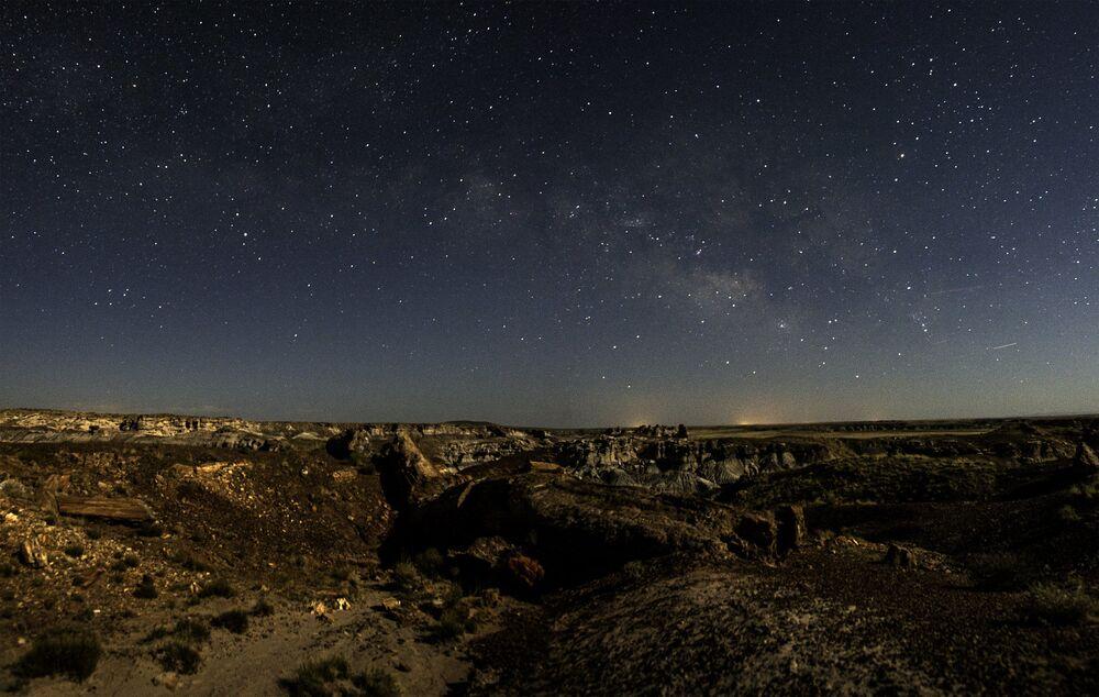 Il Parco nazionale della foresta pietrificata è un parco nazionale situato in Arizona, negli USA