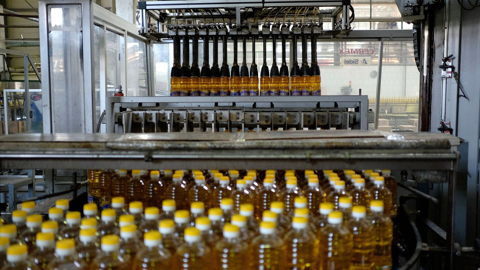 Produzione di olio vegetale in Russia - Sputnik Italia, 1920, 11.06.2021