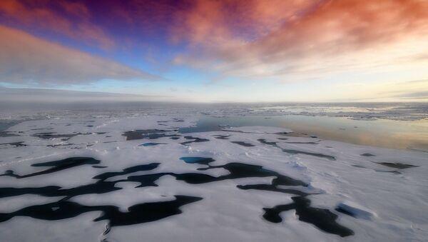 L'Artico si scioglie: persi due terzi del spessore ghiacciale negli ultimi 60 anni - Sputnik Italia