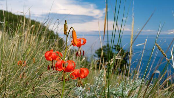 Il lago Bajkal - Sputnik Italia