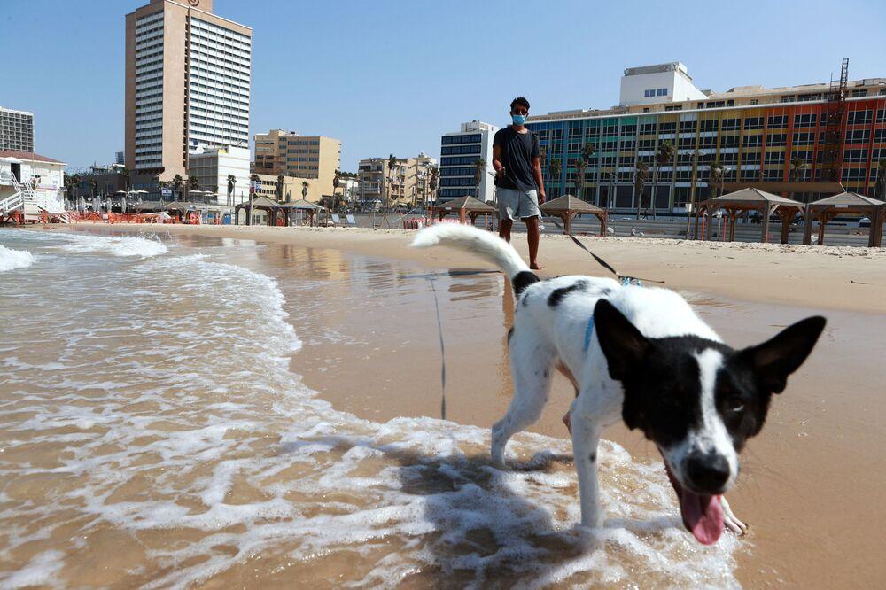 Un cittadino porta a spasso il suo cane sulla spiaggia di Tel Aviv, Israele