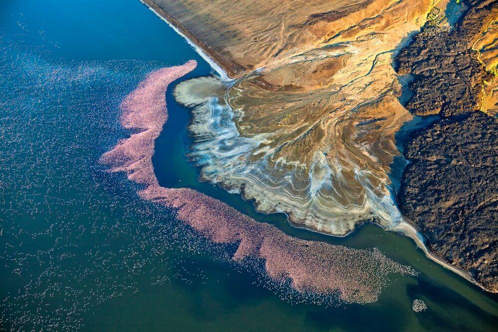 La foto Fenicotteri al Lago Logipi del fotografo Martin Harvey che è stata la seconda nella categoria Natura del concorso Drone Photo Awards 2020
