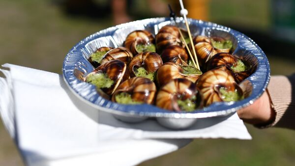 Блюдо французской кухни Эксарго на фестивале молодого вина «WineFest» в Балаклаве - Sputnik Italia
