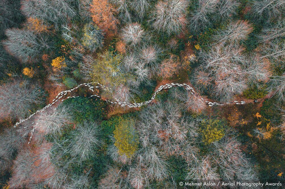 La foto del fotografo turco Mehmet Aslan, concorso fotografico Aerial Photography Awards 2020