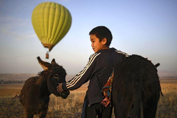 Un ragazzo insieme a un asino nei pressi della città Biškek, Kirghizistan.  - Sputnik Italia