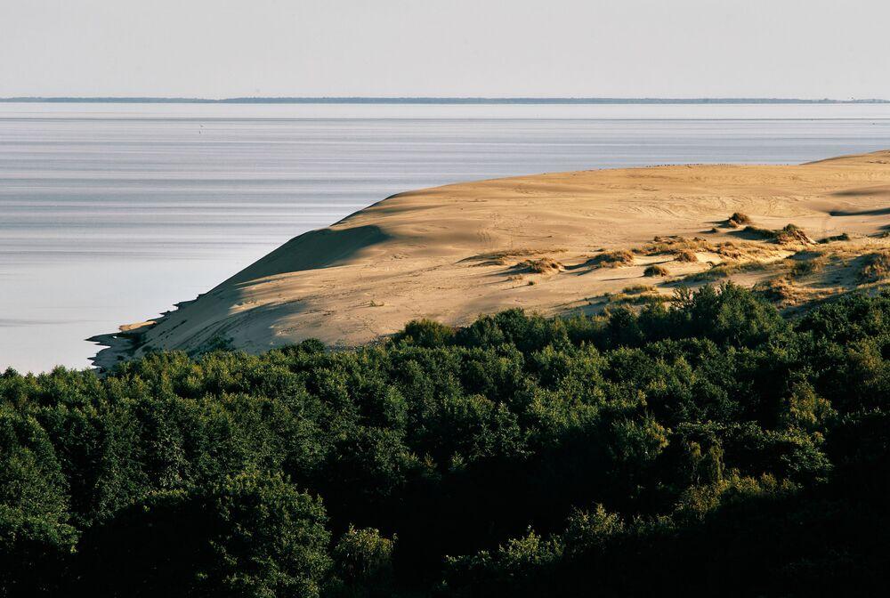 Panorama sulle dune dalla collina Efa nel Parco nazionale di Curonian Spit nella regione di Kaliningrad, Russia.