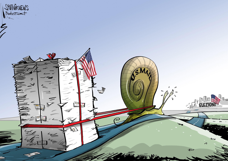 Vignetta Elezioni USA