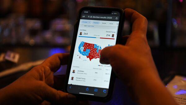 USA, spoglio online dei voti - Sputnik Italia