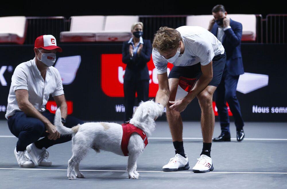Il tennista Alexander Zverev celebra la vittoria nella partita con il suo cane