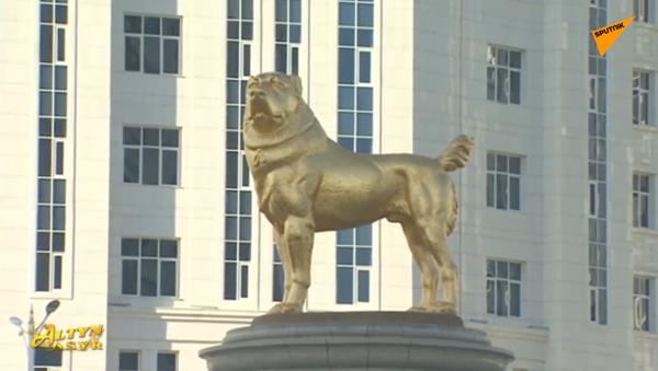 Presidente del Turkmenistan inaugura statua d'oro al cane da pastore dell'Asia centrale - Sputnik Italia