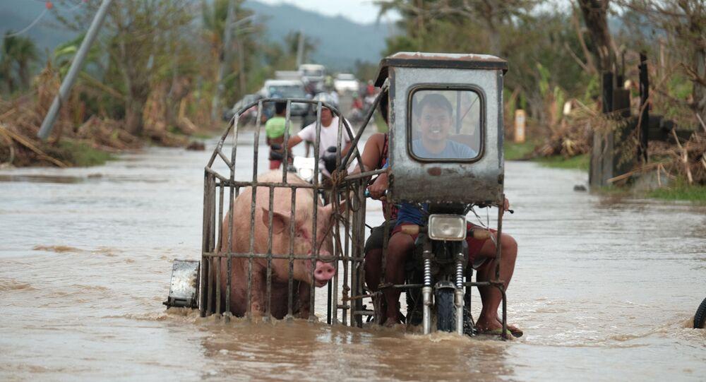 Filippine tifone Vamco