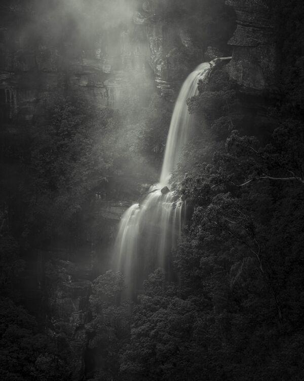 La foto del fotografo australiano Grant Galbraith, Better Photography Magazine Photo 2020 - Sputnik Italia